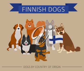 Dogs by country of origin. Finnish dog breeds. Infographic template. Vector illustration
