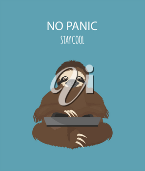 The story of one sloth. At work, study. Funny cartoon sloths in different postures set. Vector illustration