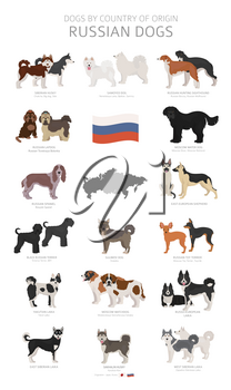 Dogs by country of origin. Russian dog breeds. Shepherds, hunting, herding, toy, working and service dogs  set.  Vector illustration