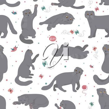 Cartoon cat characters seamless pattern. Scottish fold`s poses and emotions set. Flat color simple style design. Vector illustration