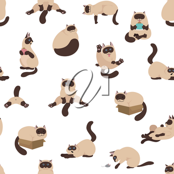 Cartoon cat characters seamless pattern. Different cat`s poses, yoga and emotions set. Flat color simple style design. Siamese colorpoint cats. Vector illustration