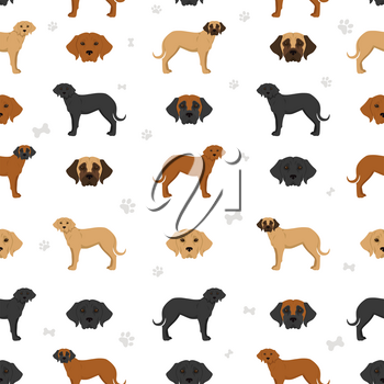 Broholmer seamless pattern. Different coat colors and poses set.  Vector illustration