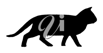 Royalty Free Clipart Image of a Cat