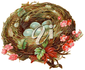 Royalty Free Clipart Image of a Bird's Nest With Flowers