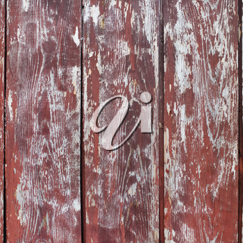 Grungy wooden background with peeling paint. Old wood texture.