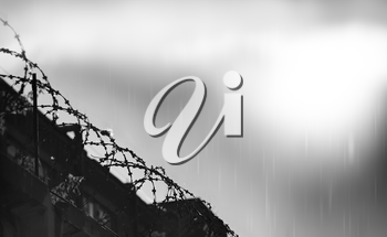 Diagonal prison barbed wire during rain hd