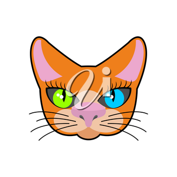 Red-headed cat face isolated. Pet on green background