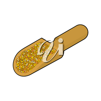 Corn grits in wooden scoop isolated. Groats in wood shovel. Grain on white background. Vector illustration