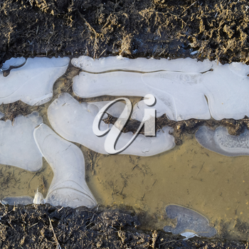 Ice on a muddy puddle on a dirt road.