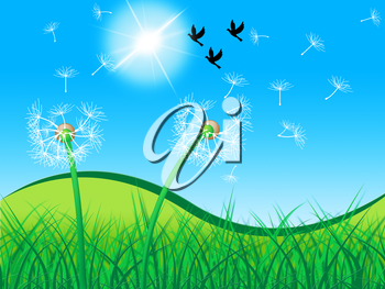 Birds Grass Meaning Dandelion Flower And Nature