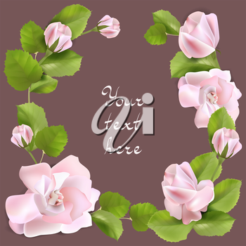 Spring background with pink roses, vector illustration