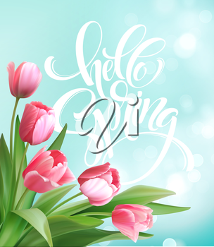 Hello Spring hand Lettering with tulip flower. Vector illustration EPS10