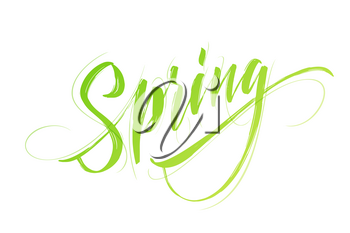 Spring handwritten lettering. Beautiful modern calligraphy. Isolated on white for easy use. Vector illustration EPS10