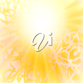 Abstract image of the sun. Sun, orange yellow abstract background.
