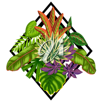 Background with stylized tropical plants and leaves. Image for advertising booklets, banners, flayers, cards, textile printing.