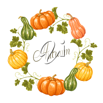 Frame with pumpkins. Decorative ornament from vegetables and leaves.