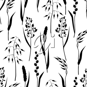 Seamless pattern with herbs and cereal grass silhouettes. Floral ornament of meadow plants.