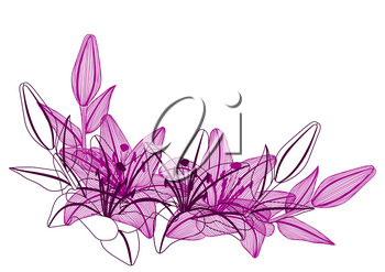 Frame with stylized lily flowers. Decorative image of beautiful buds. Linear texture.