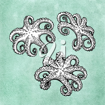 Octopuses. Seafood ink sketch on old paper background. Hand drawn vector illustration. Retro style.