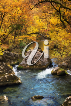 River and stones in autumn forest. Natural background