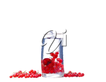 Water with red currants isolated on white