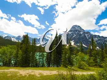 Mountains and forests in Canada. The pristine nature of the Canadian landscape.
