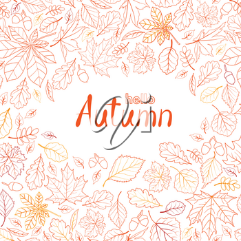 Fall leaf nature pattern with lettering hello Autumn. Autumn leaves background. Season floral icon wallpaper