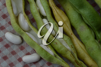 Beans. Phaseolus. Bean Seeds. Legumes. Tablecloth. Before cooking. Delicious. It is useful. Close-up. Horizontal