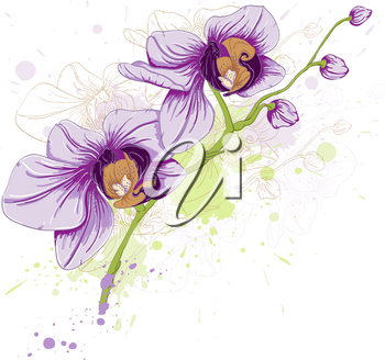 hand drawn vector floral background with orchid and blots