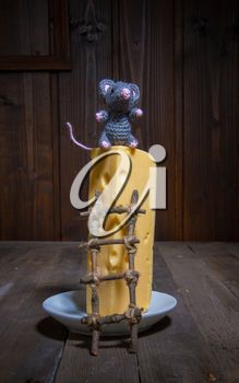 a small toy mouse symbol of 2020 with the help of a homemade wooden ladder climbs onto a large piece of cheese