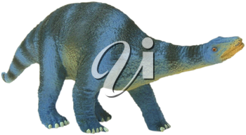 Royalty Free Photo of a Toy Apatosaurs Dinosaur