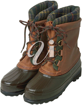 Royalty Free Photo of a Winter Boot
