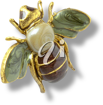 Royalty Free Photo of a Bumble Bee Brooch