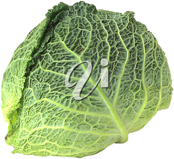 Royalty Free Photo of a Cabbage