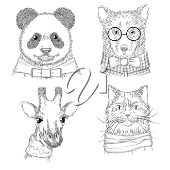 Hipster animals. Fashion adult illustrations wild animals in various clothes vector hand drawn sketches. Animal hipster wild panda and cat, bear and giraffe