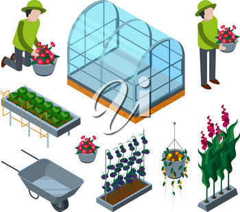 Farm greenhouse isometric. Agricultural wheelbarrow glasshouses for tomato horticulture concept vector 3d pictures. Illustration of agriculture farm, greenhouse isometric
