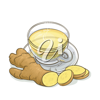 cup of ginger tea illustration on white background