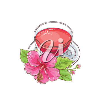cup of hibiscus tea illustration on white background