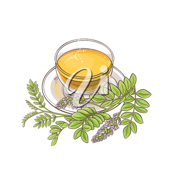 cup of licorice tea illustration on white background