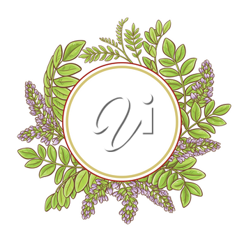 licorice plants vector frame on white background
