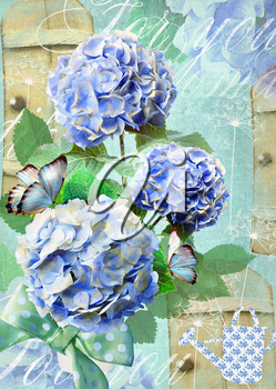 Floral postcard. Can be used for greeting or invitation, mothers day, valentines day, birthday cards, gift warp. Hydrangea flowers.