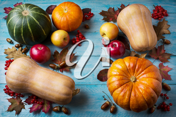 Thanksgiving  concept with pumpkins and leaves on blue wooden background. Thanksgiving background with seasonal vegetables and fruits. Fall background