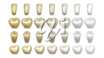 Teeth Whitening Vector. Dental Care. Cleaning Professional Teeth. Realistic Isolated Illustration
