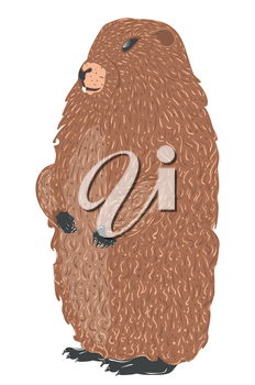 Cute cartoon groundhog, marmot in standing pose detailed illustration.