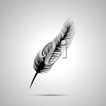 Long feather silhouette, simple black icon with shadow