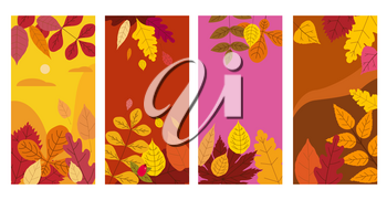 Set colorful autumn templates of autumn fallen leaves orange yellow foliage. Backgrounds social media stories banners
