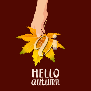 Hand hold autumn colorful leaf bright bouquet fall, floral. Hello Autumn lettering