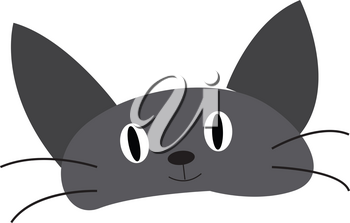 Face of a grey baby cat with black long mustache vector color drawing or illustration