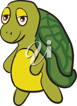 Funny green turtle smiling vector illustration on white background