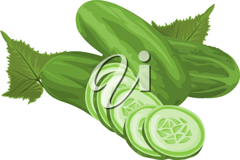 Vector illustration of whole and sliced cucumber.
